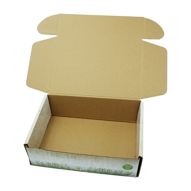 OEM color design box corrugated packaging for shipping